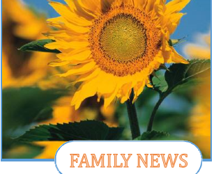 Family News – Mr. Frank Sweetapple